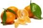 Mandarina eterično ulje 5 ml